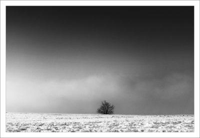 schneelandschaft-3