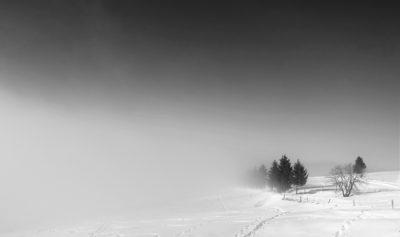 schneelandschaft-neu2