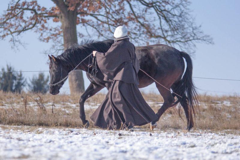 Pferdaufgehellt-1