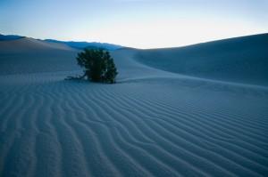 Im Vordergrund muss jedes Sandkorn scharf sein. Der Mittelgrund zählt, der Hintergrund ist egal (bloss ausgebrannt hätte er nicht sein dürfen.) 8.0 Sek. bei f / 8.0, ISO 400, 10 mm (10.0-20.0 mm f/4.0-5.6) (© PS)