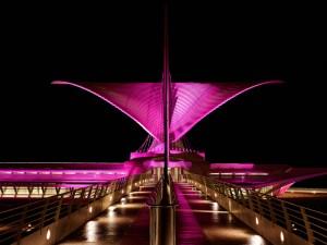 Architectural_Frank_Meyl