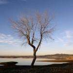 Dürre in Folsom, USA (Keystone/EPA/John G. Mabanglo)