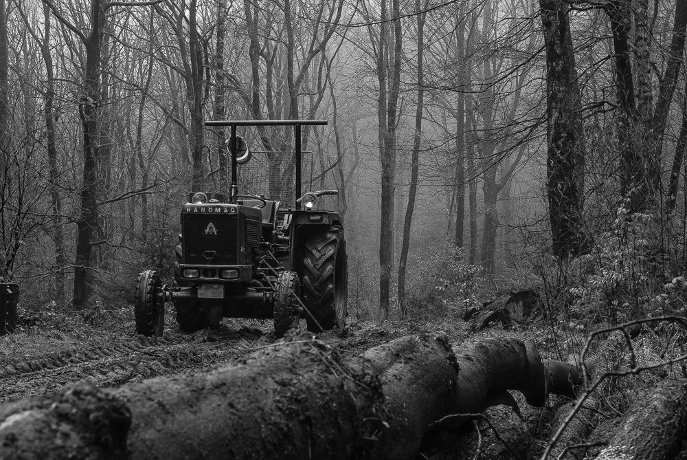 Hanomag im Wald