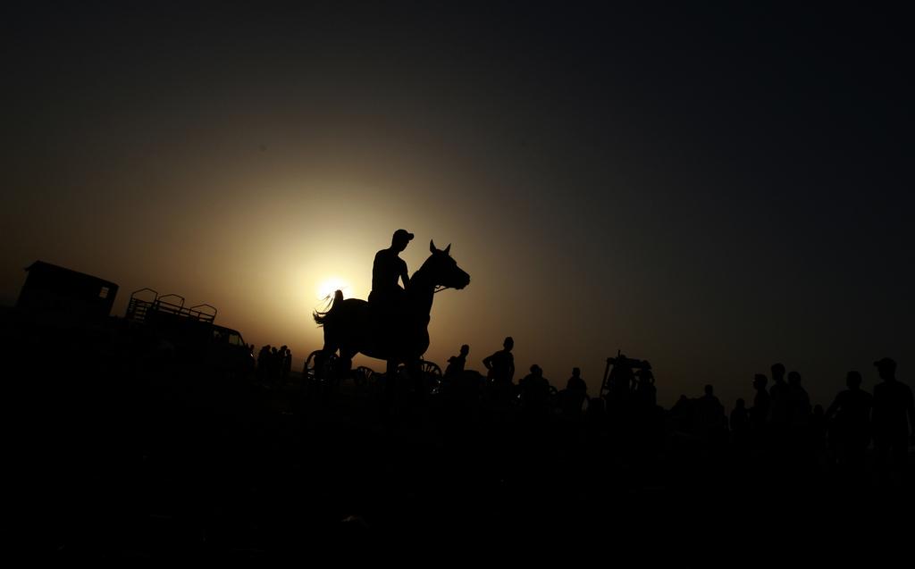 Pferderennen in Jenin, West Bank (Keystone/AP Photo/Mohammed Ballas)