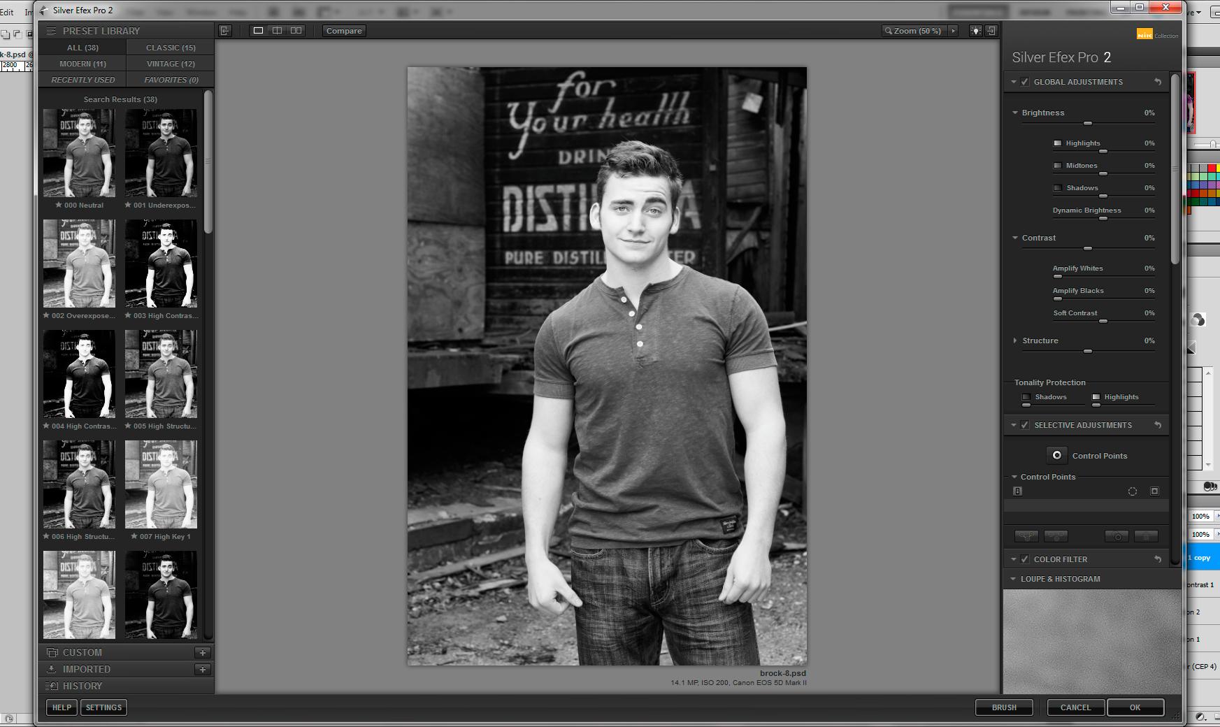 Screenshot Silver Efex Pro 2