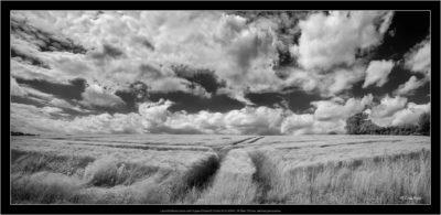 Leica M Monochrom with Super-Elmar-M 21mm f/3.4 ASPH, IR filter